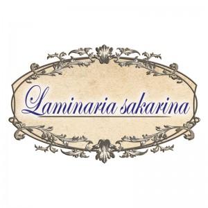 Laminaria-sakarina