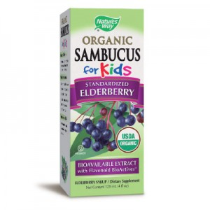 Sambucus-za-deca-NW-400x400