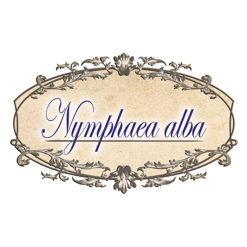 Чай  Лотос Avenir, 30 бр. - Avenir Pharma