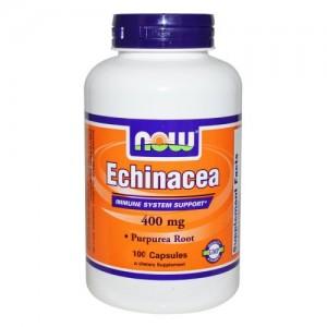Echinacea 400 мг, Now, 100 бр.