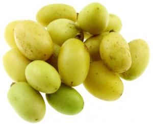 fruits mûrs du lilas des Indes, neem, fond blanc