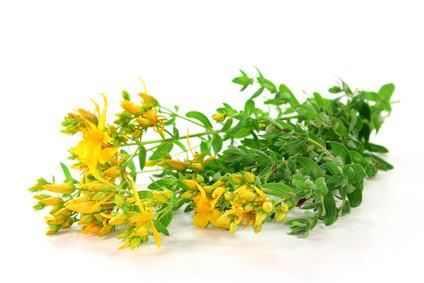Етерично масло от жълт кантарион HennaFox, 2.5мл. - HennaFox