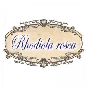 rodeola-koren